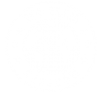 logo-top-team-white